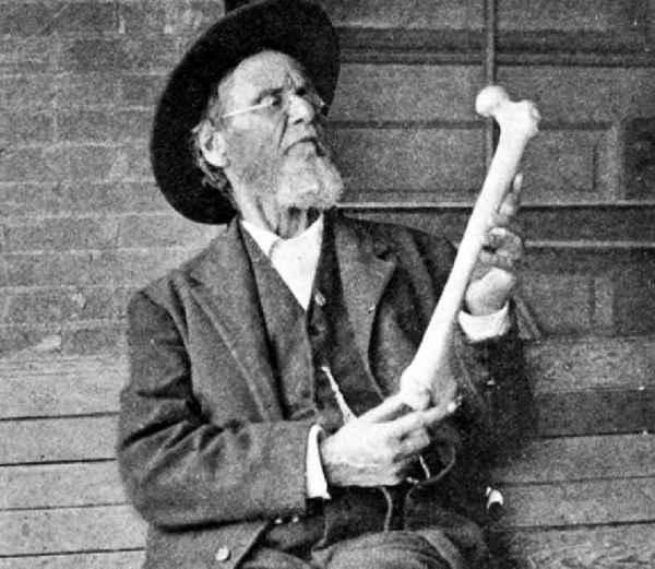 histoire osteopathie